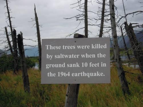 купить землю на аляске